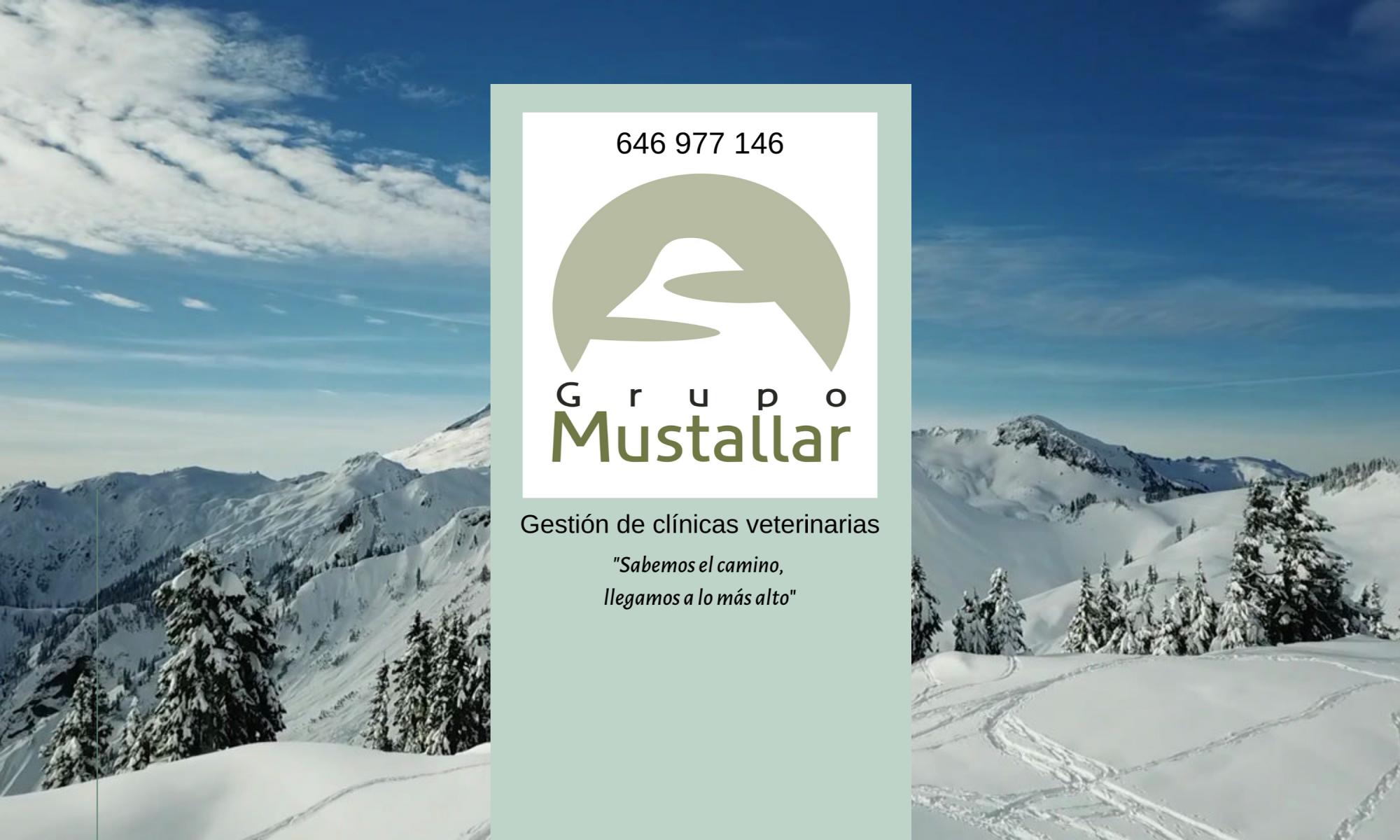 Grupo Mustallar